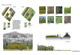 Agriculture park management
